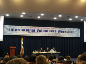 International Volunteer Workshop